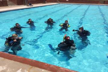 african-dive-adventures-divers-proteareef-001