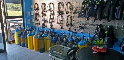 sharkdiving-proteabanks-afridive-shop-divervilla-basecamp-019